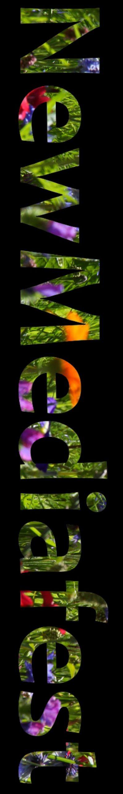 nmf-flower-vert-scaled.jpg